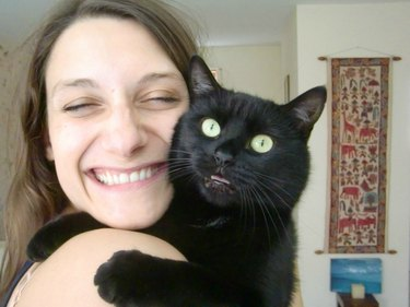Cat not happy to be included in selfie