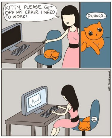 Comic about cat not moving out of chair