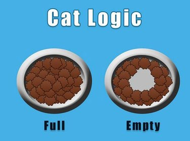Comic about cat's perception of an empty bowl