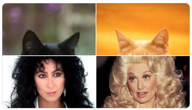 cher and dolly parton with cat ears