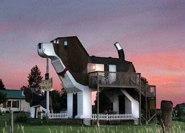 building shaped like a beagle