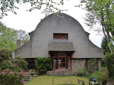 house shaped like oragutan