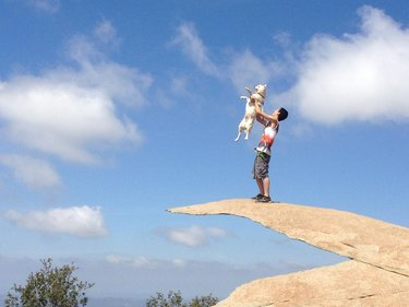 Guy holding up his dog like The Lion King on a cliff, against a blue sky.