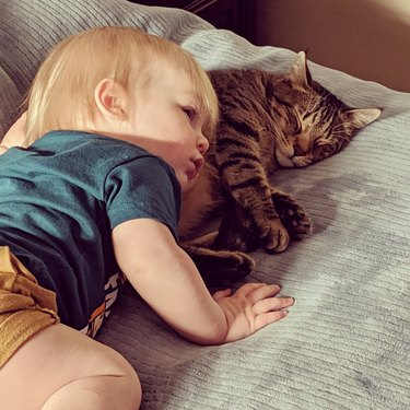 Toddler with head on sleeping cat.