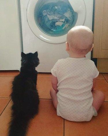 Cat and baby watching a washing machine.