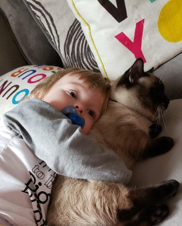 Toddler cuddling a cat.