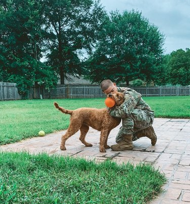 soldier returning home hugs dog