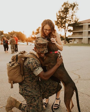 dog reunited with soldier