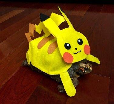 tortoise in pikachu costume