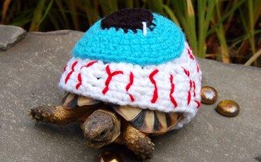 tortoise in eyeball costume