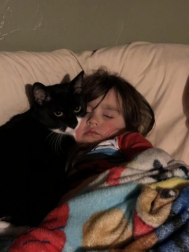 Cat with a paw on top of sleeping child.