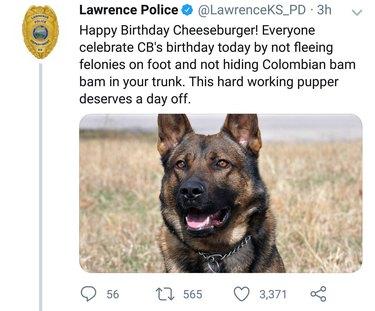 Tweet about police dog's birthday.