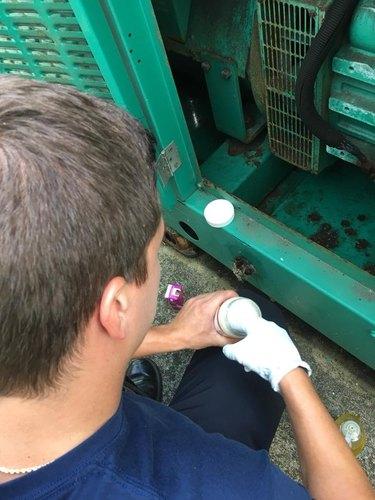 Florida firefighters rescue kitten stuck in supermarket generator