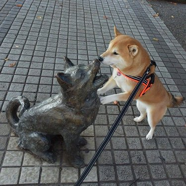 Dog touching its nose to the nose of a dog statue.