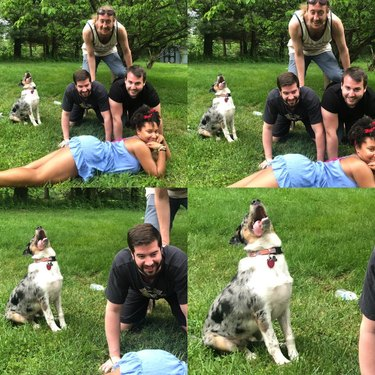 Happy dog with people doing a human pyramid