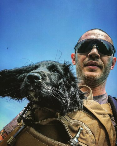 Tom Hardy and dog