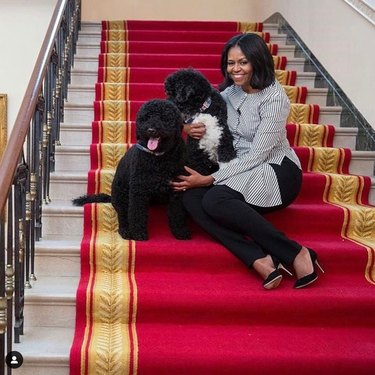 Michelle Obama and dogs