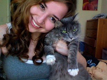 Grumpy looking cat being held by woman taking a selfie.