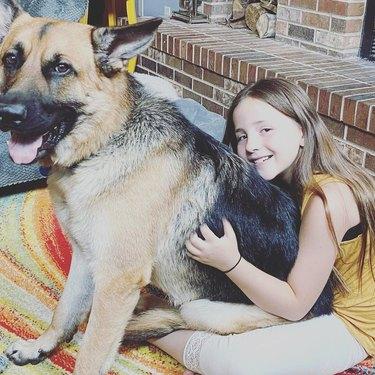 german shepherd sits on girl