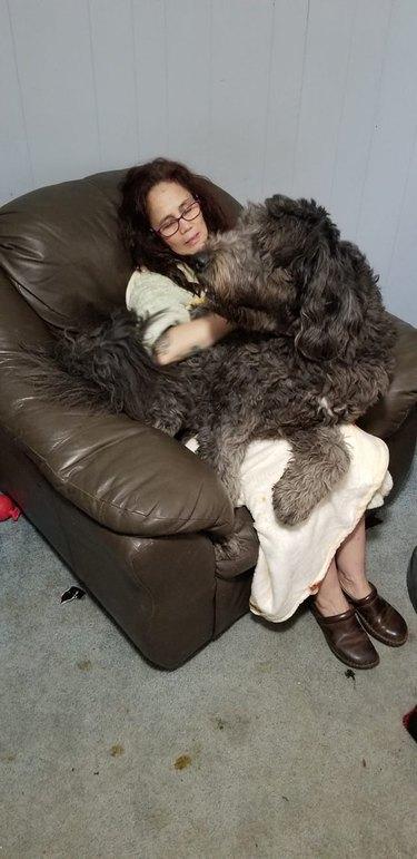 big dog sleeps on sleeping woman