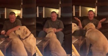 Family gives dog jealous of sibling placebo for ear