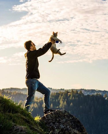 Man on a mountain holding up a cat like Simba in The Lion King