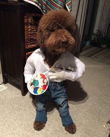 Dog dressed as Bob Ross
