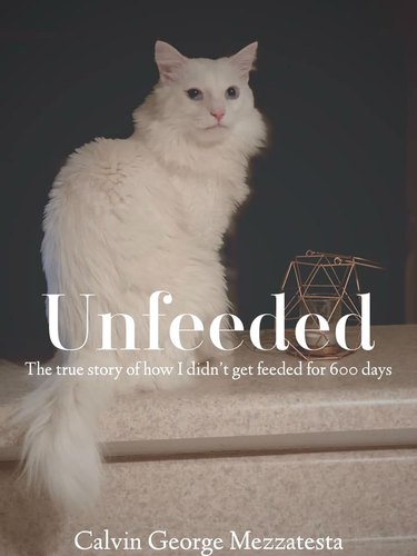 cat poses for (fake) book cover