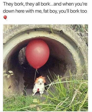 Chihuahua dressed up like Pennywise the Dancing Clown from It