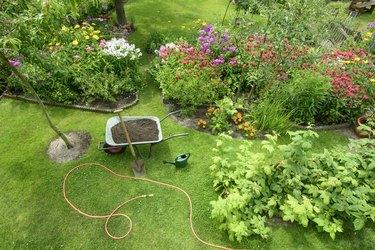 Garden view from overhead