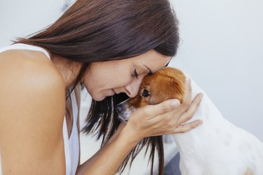woman praying for her unhealthy dog in a clinic