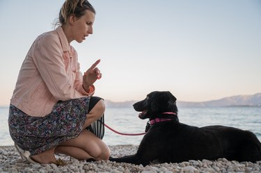 Young woman kneeling down to give cue to her black shepherd dog