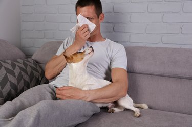 Man with runny nose and dog on the couch