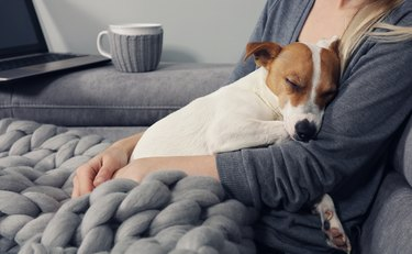 Cozy home, woman covered with warm blanket watching movie, hugging sleeping dog. Relax, carefree, comfort lifestyle.