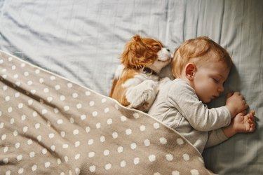 baby and his puppy sleeping peacefully