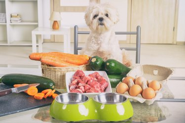 Preparing natural food for pets