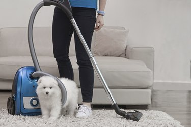 Woman holding vacuum standing with fluffy white dog