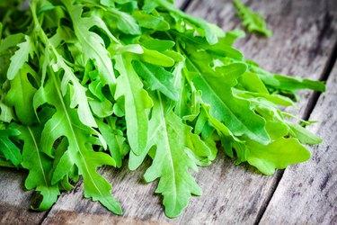 bunch of fresh organic arugula closeup
