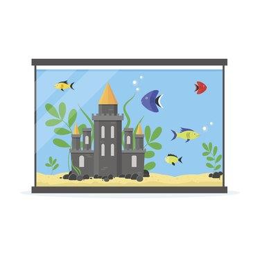 Glass Aquarium for Interior Home. Vector