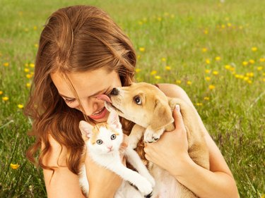 girl in field with kitten and puppy