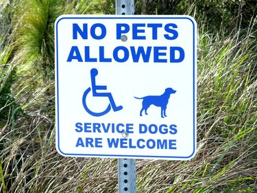 'No Pets Allowed - Service Dogs Are Welcome' sign