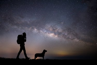 Silhouette Man Walking With Dog On Field Against Star Field