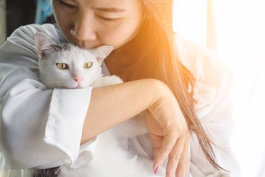 woman kissing her cute white cat with love