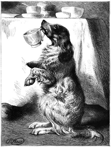 Dog holding a tea cup in his mouth old black and white drawing