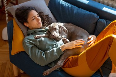 Young woman taking a nap on the sofa with her puppy