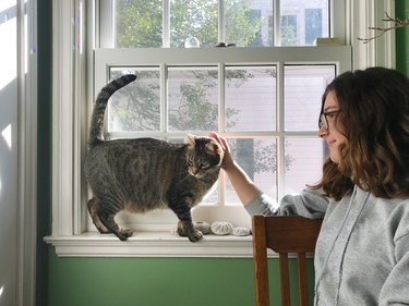 Teen Girl Petting Cat Balanced on a Windowsill