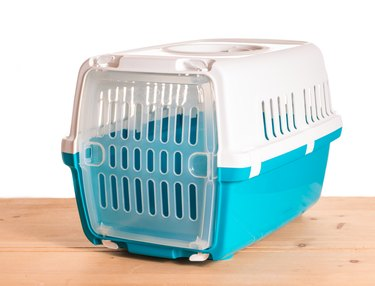transport box for small animals cat dog