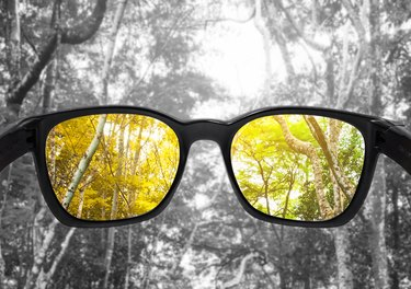 Glasses with forest, selected focus on lens,  colour blindness glasses