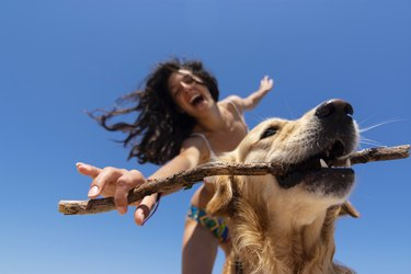 Young woman playing with her dog in a a beach