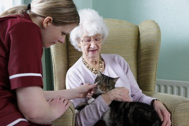 young nurse and senior woman stroking cat in care home